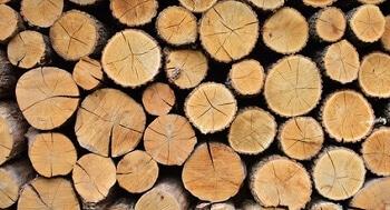 Holzfeldbett-Campingbett-Holz